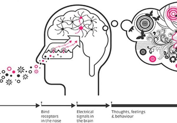 Science-meet-creativity